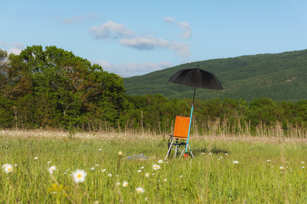 Best Portable Umbrellas for Plein Air Drawing and Painting – ARTnews.com